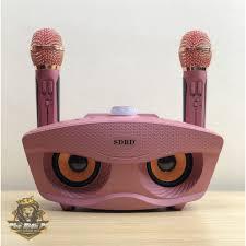 CHÍNH HÃNG] Loa karaoke mini SD 306 hát chuẩn tặng kèm 2 mic kết nối  bluetooth hỗ trợ ghi âm tách lời- BH 6 tháng, Giá tháng 10/2020
