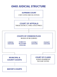 Judges Chart Ohios Court System Judicial Votes Count