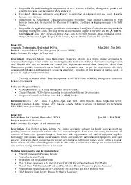 technical lead resume