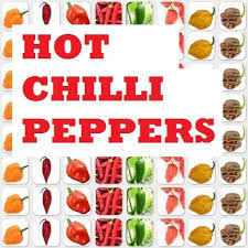 16 Tips On Growing Hot Chilli Peppers In A Cold Climate 4