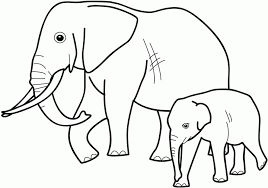 Small Picture childrens coloring pages animals free printable coloring pages
