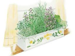 indoor herb box