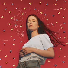 Sigrid – <b>Don't Kill My Vibe</b> Lyrics | Genius Lyrics