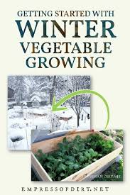 how to grow vegetables outdoors in the