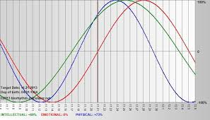 Biorhythm Calculator Net Check Your Biorhythms Its Fun