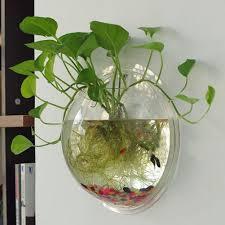 Decorative Betta Fish Bowls Amazon LotsBeaty Creative Acrylic Hanging Wall Mount 60 Gallon 34