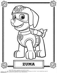 Coloriage Pat Patrouille Zuma Jpg 1000