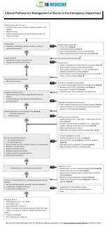 Emergency Medicine Cme Evidence Based Excellence Eb Medicine