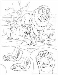 Small Picture Page Free Printable Pages Calm Wecoloringpage Calm Lion Color Page