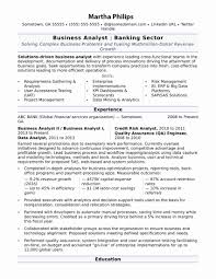 Resume Services Resume format for Banking Sector for Freshers Awesome Professional 96