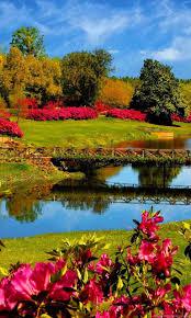 Beautiful Nature Wallpaper Spring 1.jpg ...