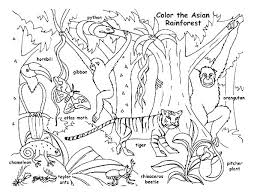 Printable Coloring Sheets Animals Animal Pages Preschool With For