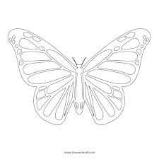 Printable Butterfly Outline Butterfly Outline Photo Sharing Template Bowlfiesta Co