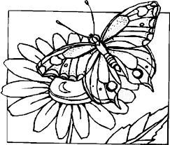 flower and butterfly coloring pages. Fine And Butterfly With Flowers Coloring Pages  Bing Images And Flower U