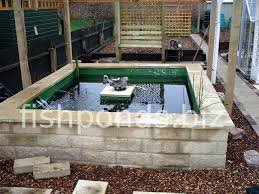 building a koi pond finished pond picture 1