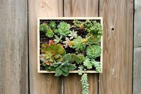 vertical succulent garden planter