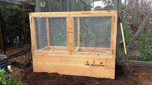 raised garden bed with a durable cage