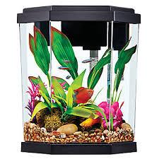 petsmart goldfish tank. Plain Petsmart Top Fin 2 Gallon Intrigue Aquarium Kit To Petsmart Goldfish Tank D