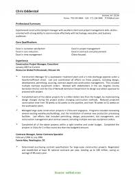 Resume Skills And Abilities Management Samples New Best Technical