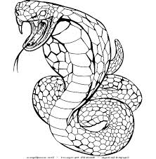 Small Picture king cobra coloring pages king cobra coloring sheet king cobra