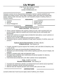 Examples Of Resumes For Customer Service Representative Customer