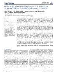 an essay about alternative medicine journals