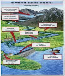 Хозяйственное значение рыб Рыбоводство и охрана рыбных запасов  Влияние хозяйственной деятельности человека на состояние рыбоводческих угодий Влияние хозяйственной деятельности человека на состояние рыбоводческих угодий