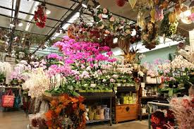 how to at the los angeles flower market 22