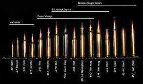 Centerfire Bullet Size Chart 80 Competent Rifle Calibers Chart Smallest To Largest