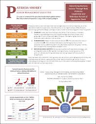 Infographic Resume Example For Executive Resume Examples