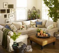 Lavender Living Room Home Design Shab Chic Living Room With Lavender Indoor Plants