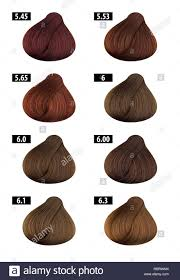 Haircolor And Hair Dye Colours Chart Colour Numbers 4