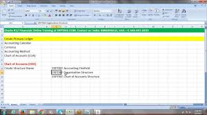 Oracle R12 Financials Training Chart Of Accounts Creation 120 Hours Classes