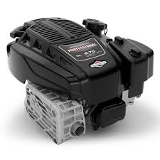 Briggs And Stratton Engine Oil Capacity Chart Professional Series Engines