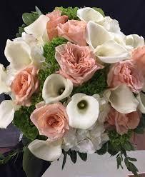f j foggia florist inc florist 196 monmouth blvd oceanport nj 07757