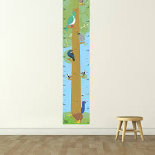 Tall Timber Height Chart Native Birds All Childrens Gifts