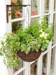 Hanging Kitchen Herb Garden Hanging Herb And Vegetable Basket Hgtv