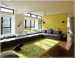 Awesome Ikea Living Room Rugs Home Decor Lime Green Paint Modest Color  Shades For Perfect Ideas ...