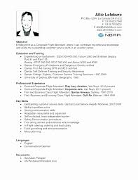 Flight Attendant Resume Mesmerizing Airline Attendant Resume Sample Unique Flight Attendant Cover Letter