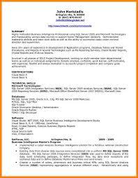 Bi Developer Resume Unusual Design Bi Developer Resume 11