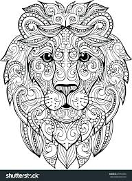 mountain lion coloring page best pages ideas on lions mountain lion coloring page pages baby co