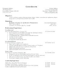 Objectives For A Resume New Job Objectives On Resumes Sample Job Objectives For Resumes