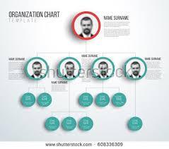 Free Hierarchy Chart Minimalist Company Organization Hierarchy Chart Template