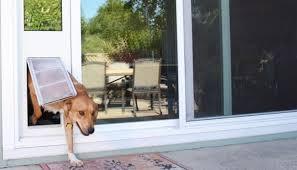 best dog door for sliding glass door in
