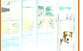 doggie door for sliding door french door pet door window dog door french door door sliding door pet panel door awesome french door dog door sliding glass