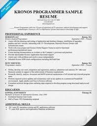 Sample Computer Programmer Resume About Sample Programmer Resumes