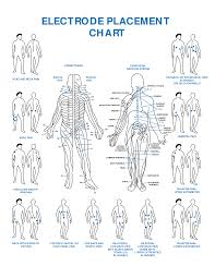 Tens Machine Pad Placement Chart Tens Electrode Placement Chart Pdf Bedowntowndaytona Com