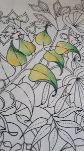it also looks like the pencils do well on diffe types of paper my old bruynzeel set do very well on the paper in my secret garden colouring book and