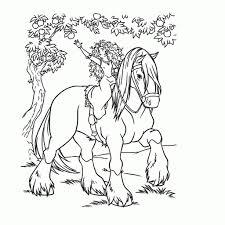 20 Idee Kleurplaten Mandala Moeilijk Paarden Win Charles