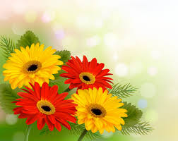 spring flowers vector free vector
